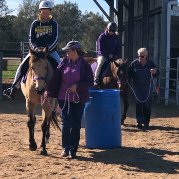 Offering a social outlet in the form of horse riding for people with disabilities and additional needs